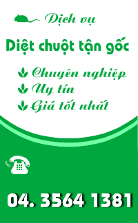 diet-chuot-banner-300-g
