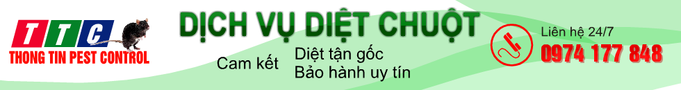 diet-chuot-banner-980-g